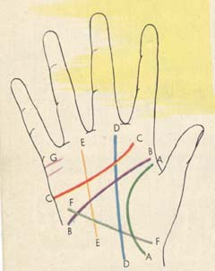 Course of palmistry | lines of palmistry | Learn Secrets of